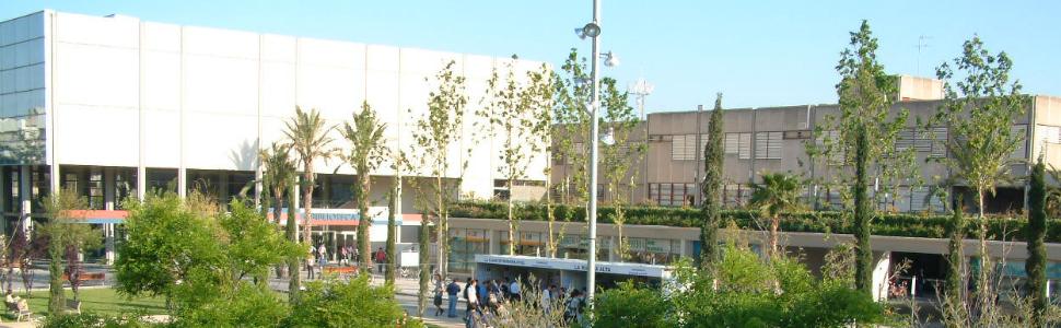 Préparation selectividad pour étudier à Valencia